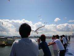 8月25日 新潟港を発つ