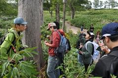 8月27日 エゾシカの食害で枯れた樹木
