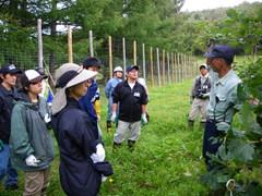 8月28日 100平方メートル運動の森・トラストの森づくりで植栽している樹木の説明を受ける