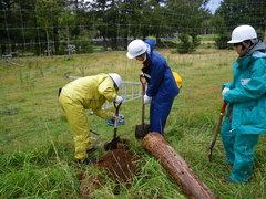 8月28日 シカ柵の杭を立てる穴を掘る