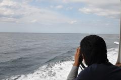 8月29日 グジラとイルカを双眼鏡で探す
