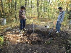 全ての腐葉土を埋め戻しました。