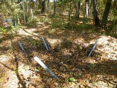土壌動物観察を行う前の堆肥場のようす