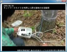 実習:森の中のネットワーク環境の構築とライブ映像の発信