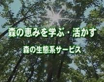 森の恵みを学ぶ・活かす   ~森の生態系サービス~