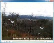 恵みの森稜線部の定点撮影(2010春)