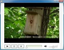 巣箱にスズメバチが・・・。