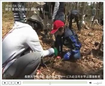実習:野生果樹の植栽と森林再生